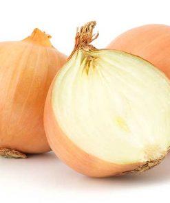 la cebolla - Frutería de Valencia