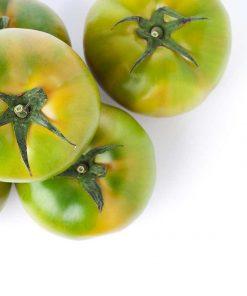 tomate - Frutería de Valencia
