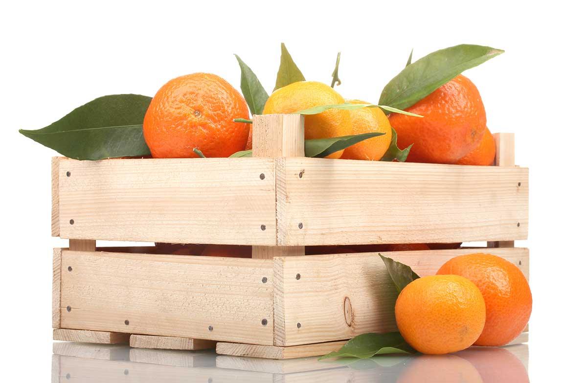 naranja - Fruteria de Valencia
