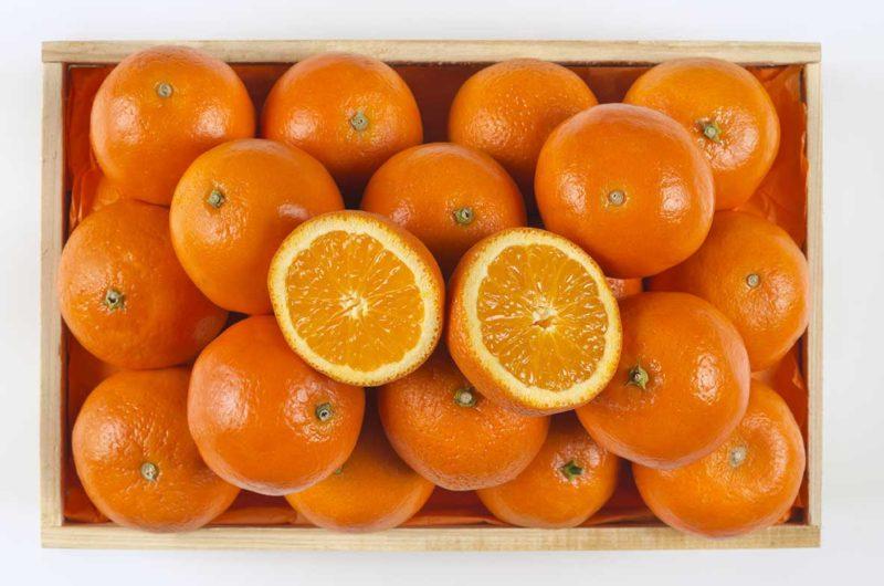 naranjas de valencia - Fruteria de Valencia