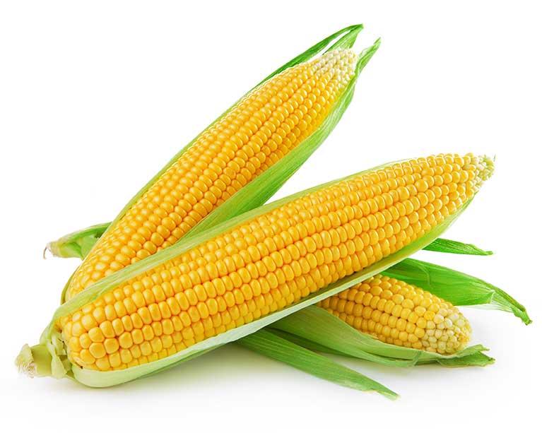 Compra Mazorca De Maiz Online En Frutería De Valencia