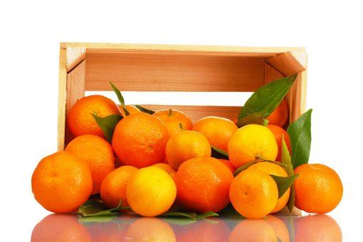 naranjas - Fruteria de Valencia