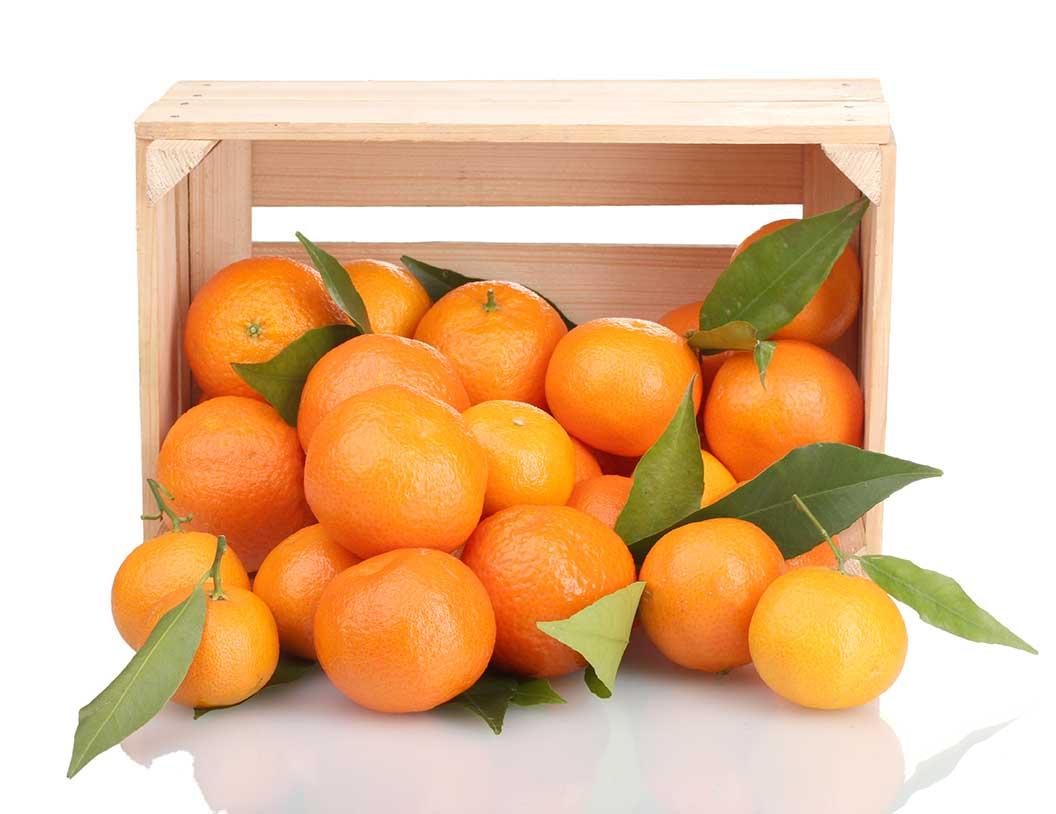 mandarinas y naranjas - Fruteria de Valencia