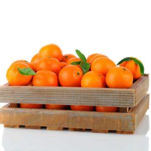 Naranjas para Zumo - Single - Fruteria de Valencia