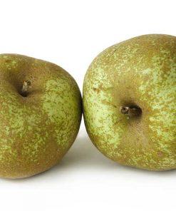 manzanas reinetas - Frutería de Valencia