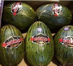 melones bollo - Frutería de Valencia