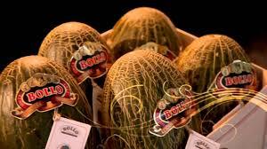 Melon Bollo Bodega