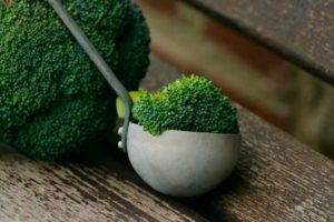 broccoli proteinas vegetales